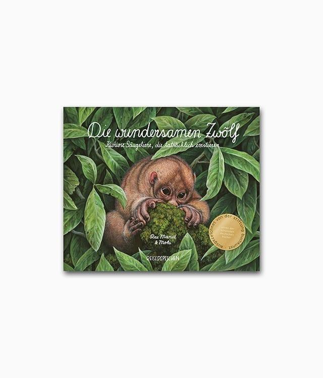 Die wundersamen Zwölf Reisedepeschen Verlag Buchcover
