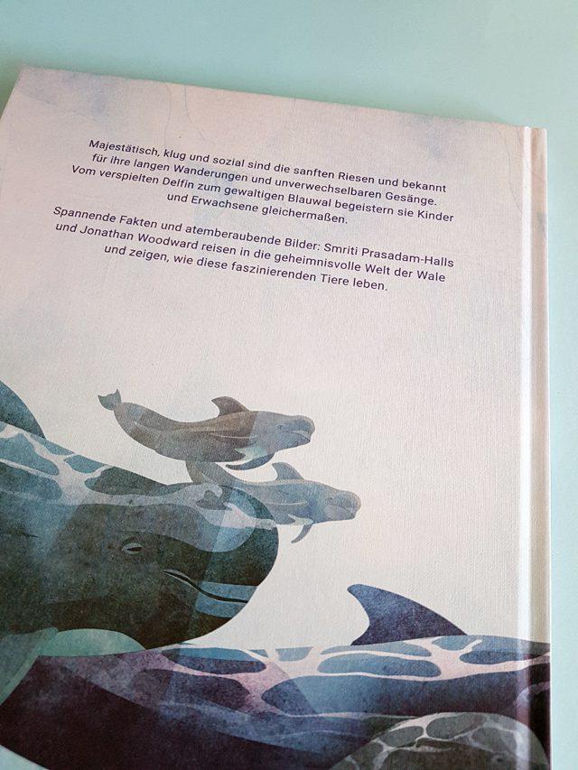 Das geheime Leben der Wale Aladin Verlag Buchrückseite