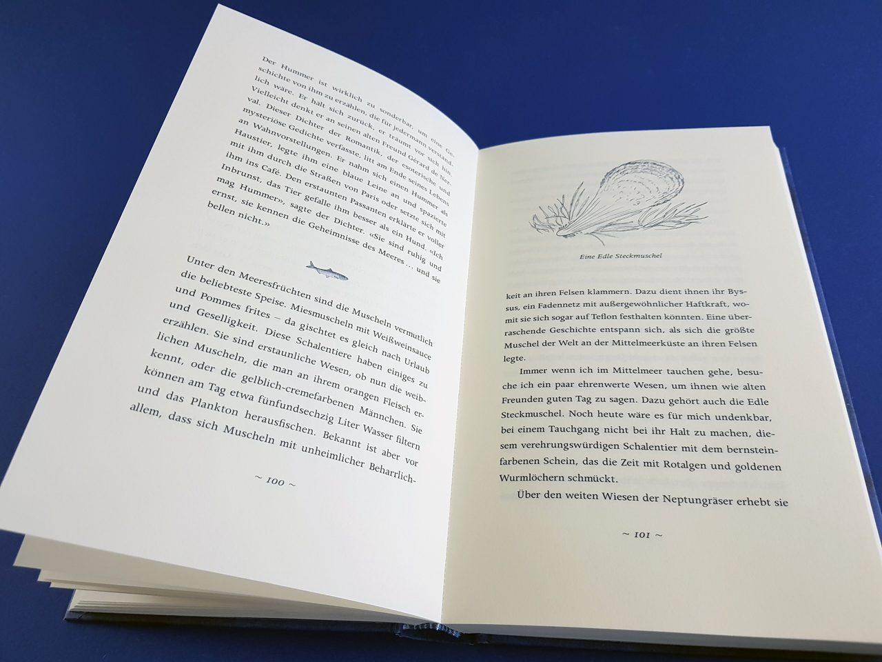 Die Eloquenz der Sardine C.H.Beck aufgeschlagenes Buch