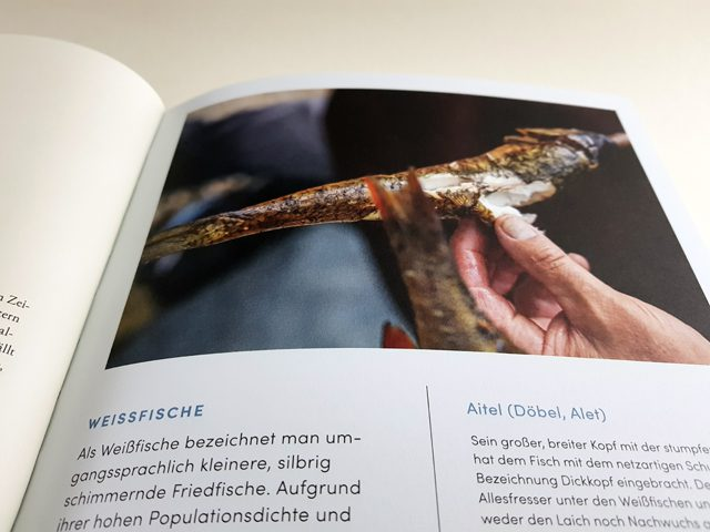 Süßwasserfisch Gegrillt gekocht geräuchert eingemacht Südwest Verlag aufgeschlagenes Kochbuch