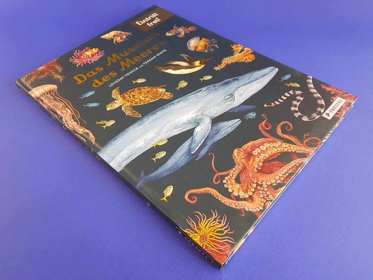 Das Museum des Meeres Eintritt frei Prestel Verlag Buchcover liegend