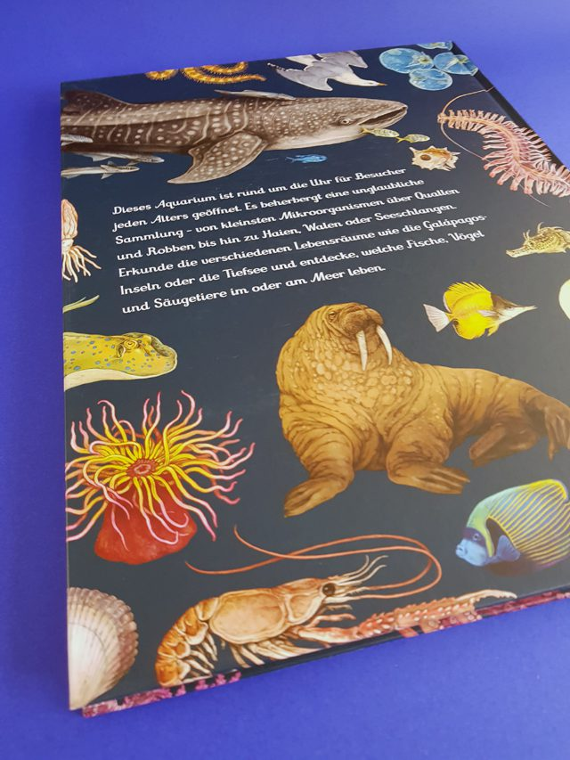 Das Museum des Meeres Eintritt frei Prestel Verlag Buchrückseite